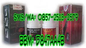 minyak lintah asli papua jual minyak lintah papua