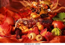 harvest thanksgiving feast stock photos harvest thanksgiving