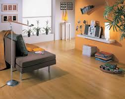 Laminate Flooring Dark Wood Small Hallway Living Room Design With Cherry Wood Laminate