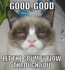 Original Grumpy Cat Meme - 30 images about lol grumpy cat meme on we heart it see more