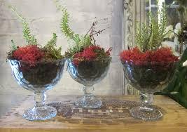Indoor Plant Arrangements Indoor Plant Decor Design Stylebook For Houseplants U0026 Contest To