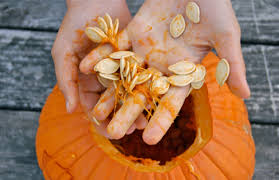 Toasting Pumpkin Seeds Cinnamon Sugar by Foolproof Steps For Roasting Pumpkin Seeds At Home Famlii