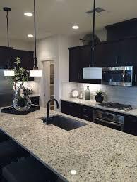 kitchens with dark cabinets best 25 dark kitchen cabinets ideas on pinterest dark cabinets