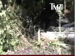 ryan dunn u0027s car crash aftermath real video youtube