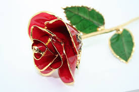 Gold Dipped Roses 5 Things Your Wife Does Not Want For Valentine U0027s Day What The