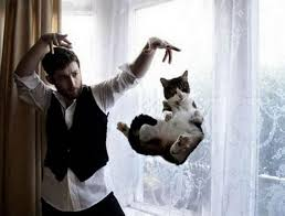 Mysterious Cat by Photo Mysterious Man Levitates Cat David J Rodger Science
