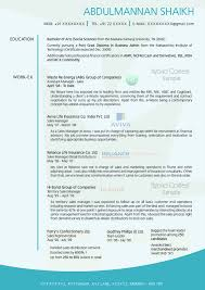 Director Level Resume Examples by Resume Creative Director Resume Sample