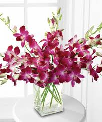 Dark Purple Vase Dendribium Orchids In Vase Boston Ma Central Square Florist