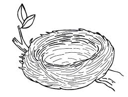 warm and safe bird nest colouring page warm and safe bird nest