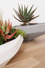 Cactus Planter by 391 Best Planter Design Ideas Images On Pinterest Planters