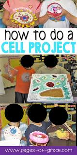 best 25 cells 5th grade ideas on pinterest science cells cell