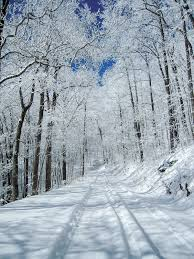 Georgia top places to travel images 8 places in georgia that everyone must visit this winter jpg
