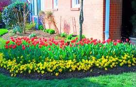 spring landscaping spring cleanup fairfax grounds maintenance