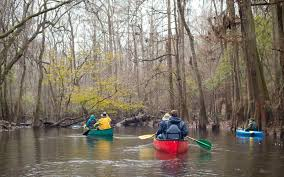 South Carolina national parks images South carolina 39 s only national park is a hidden gem you 39 ll want to jpg