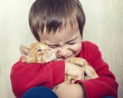animals and preschoolers