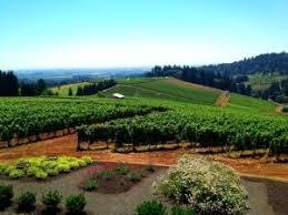Valley Oregon Willamette Valley Oregon Wine Sojourns