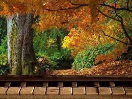 piano playground october 2011