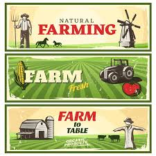farm to table concept farm to table concept banners set stock vector illustration of
