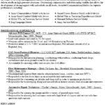Resume Computer Skills Examples by Resume Computer Skills Examples Resume Template 2017