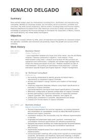 resume examples for business owners