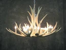 antler chandeliers and lighting company authentic antler chandelier chandeliers antler chandeliers lighting