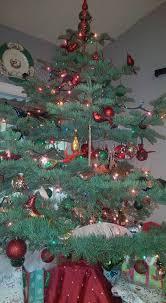 frosty fir tree farm home facebook