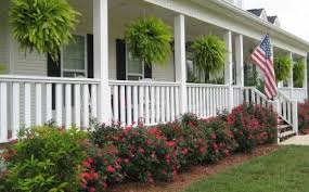 oh so southern rose bushes love yard ideas pinterest