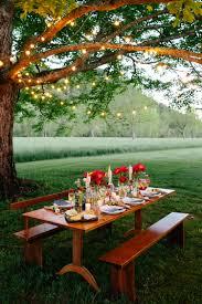 backyard party inspiration chic soirées pinterest picnics