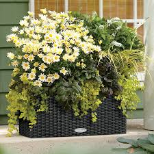 20 Inch Planter by Lechuza Granite All In One Balconera Cottage Self Watering Planter