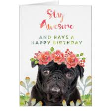 birthday pug black greeting cards zazzle co uk