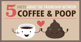 Coffee Poop Meme - 5 facts about the friendship between coffee and poop i love coffee