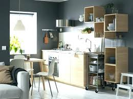 Metal Kitchen Cabinet Doors Ikea Metal Storage Cabinet Metal Kitchen Cabinets And Kitchen