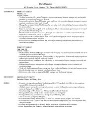 chef resume exle chef resumes indeed images professional resume exle ideas