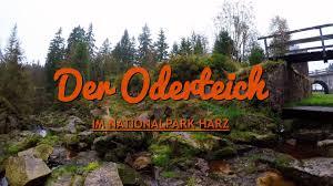 Baden Im Harz Der Oderteich Nationalpark Harz Herbst 2017 Gopro Hero 5
