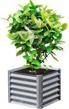 metal garden herb planters boxes ebay