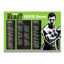 how much does amazon cut off on black friday amazon com body beast dvd workout base kit exercise and