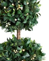 Laurel Topiary - 38 best topiary trees images on pinterest topiary trees