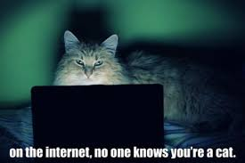 Cat Internet Meme - image 428228 on the internet nobody knows you re a dog know