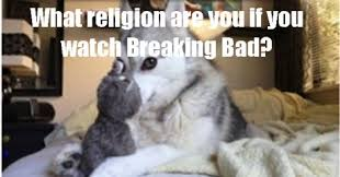 Meme Pun - husky dog meme pun pictures to pin on pinterest