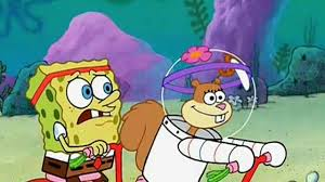 spongebob squarepants s02e13 survival of the idiots video