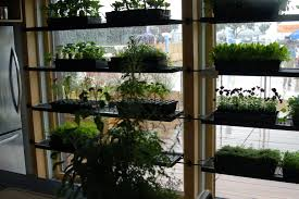 doors indoor t containers images of plant decoration with