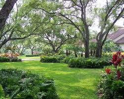 Landscaping Ideas For Front Yards Front Yard Landscaping Orlando Fl Houzz