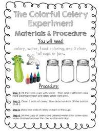 356 best experiment images on pinterest science ideas teaching