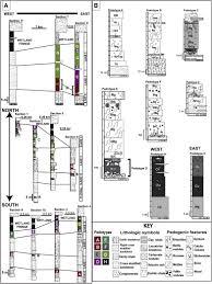the burrow floor plan differentiating paleowetland subenvironments using a multi