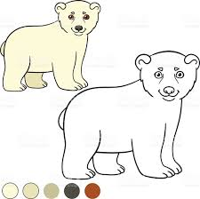 coloring page little cute baby polar bear stock vector art