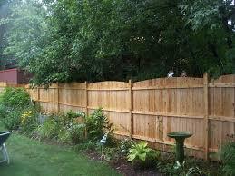 Privacy Ideas For Backyard Fresh Simple Backyard Privacy Fence Ideas 10382