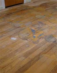 repair minor hardwood floor problems