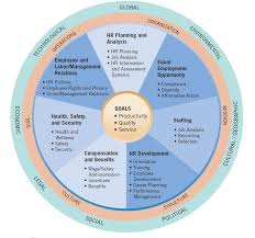 hrm activities within an organization learn hr management