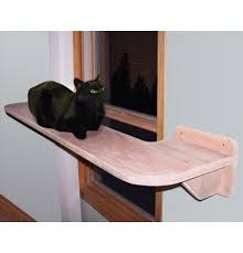 Modern Cat Trees Furniture by Best 25 Cat Wall Shelves Ideas On Pinterest Diy Cat Shelves
