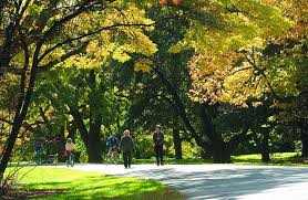 boston convention and visitors bureau arnold arboretum credit information greater boston convention